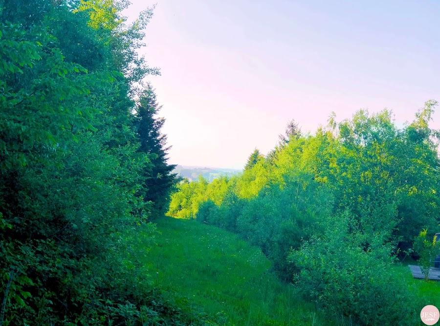 avis-sejour-center-parcs-domaine-les-trois-forets-moselle-voyager-en-famille